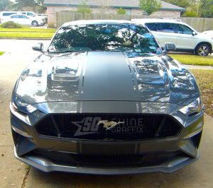 2019 Mustang GT 500 Snake Racing Stripes Shelby front