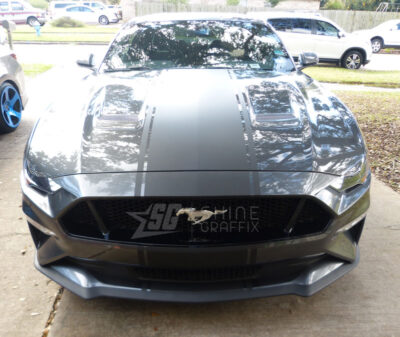 2019 Mustang GT 500 Snake Racing Stripes Shelby Front bumper