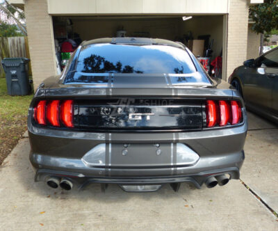 2019 Mustang GT 500 Snake Racing Stripes Shelby Rear view