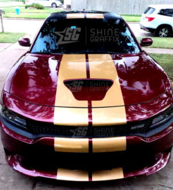 Dodge Charger Daytona 11 in Dual Racing Stripes-front view